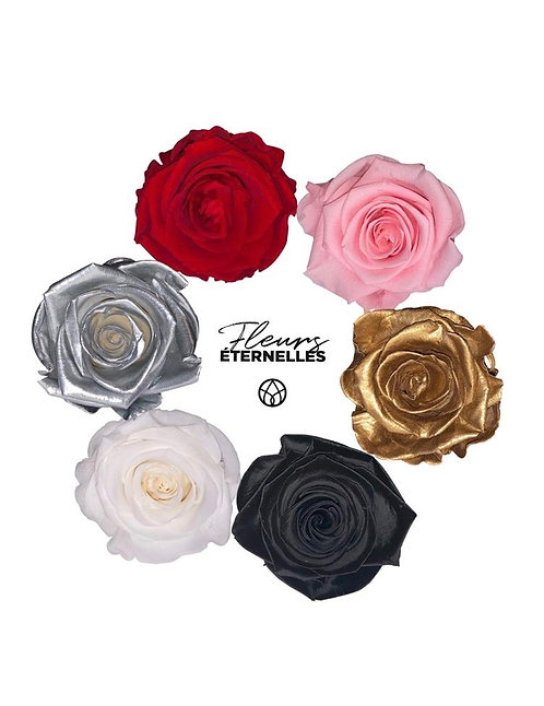 Vase avec une Rose Eternelle