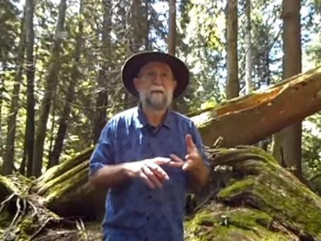 Naturalist Lynn Pollard in 360°!
