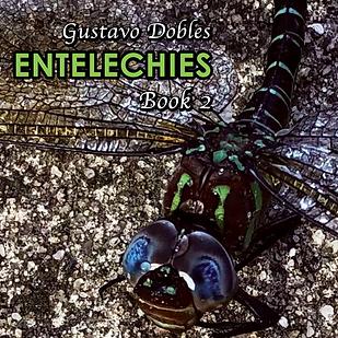 Entelechies -CoverBook2-FINAL   pr-y19m1