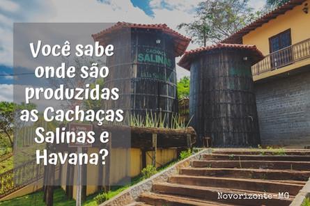 Você sabe onde são produzidas as cachaças Salinas e Havana?
