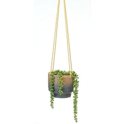Succulent Arrangement in Blue & Clay Hanging Planter