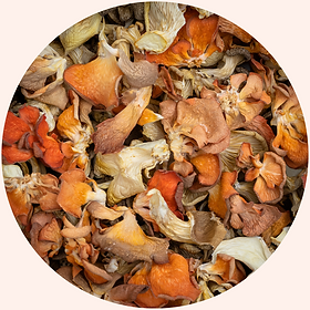DRIED MUSHROOMS in circle.png