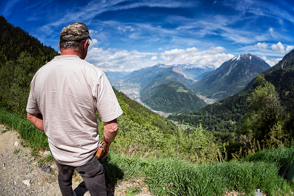 Roady looking out over the Martigny Valley