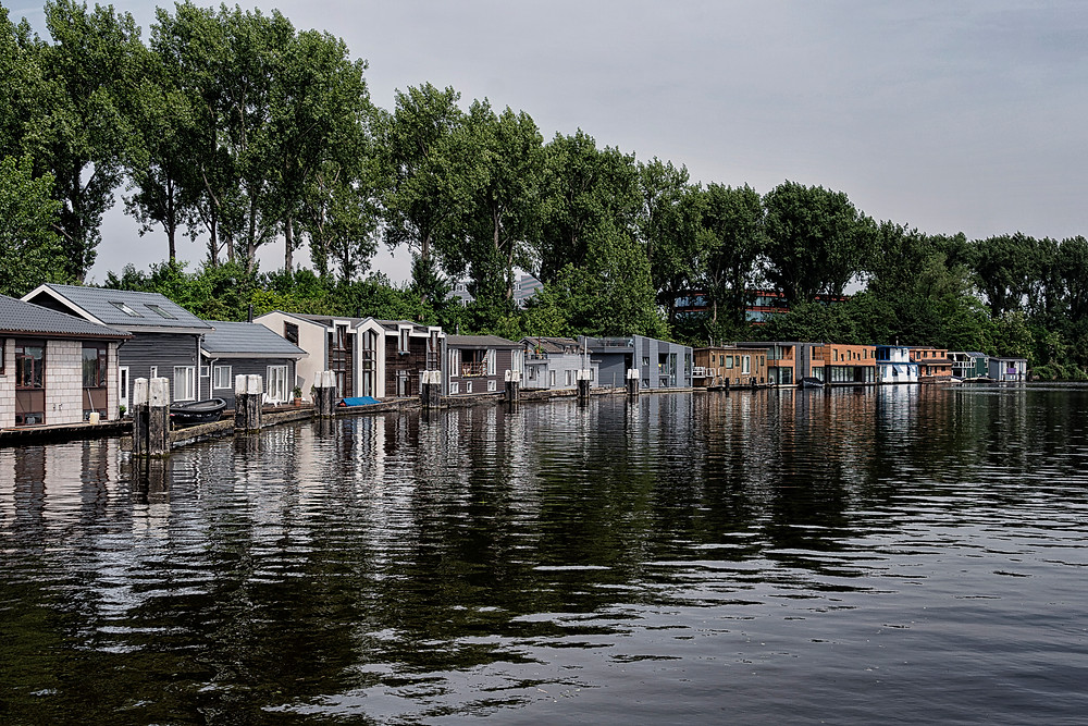 House boats everywhere