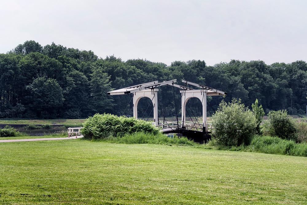 Roady loved this bridge