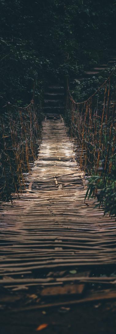 Bucari Bridgework