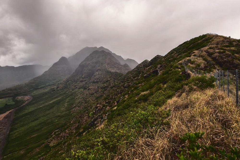 Jurassic landscape as we scrambled up to Ohikilolo Ridge