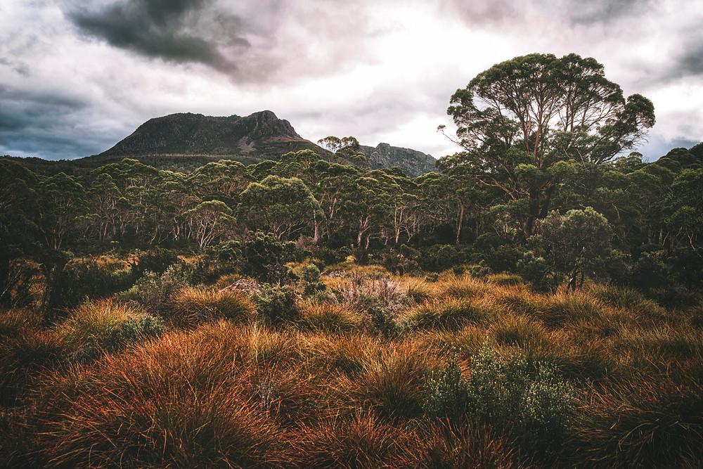 Extraordinary Landscapes