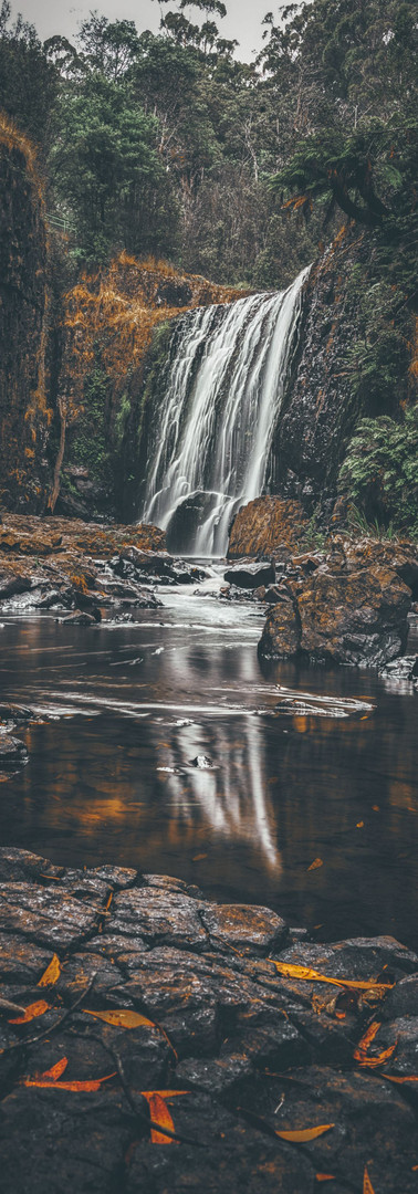 Guide Falls - TAS, Australia