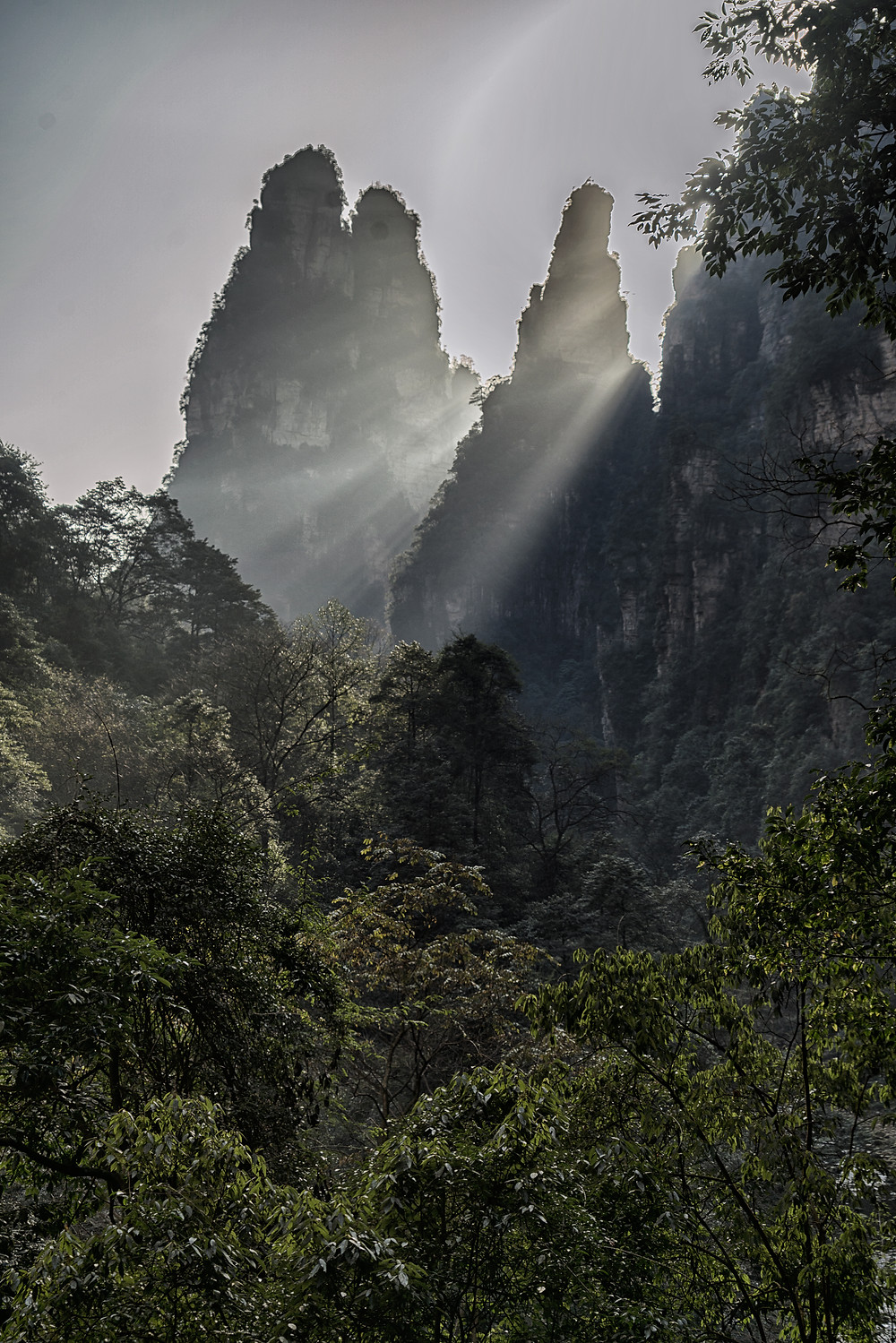 Sunlight in Zhangjiajie