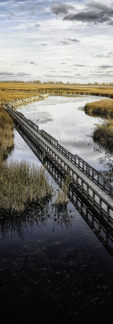 Point Pelee National Park - Canada