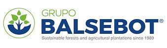 logo-GRUPO-BALSEBOT-definitivo.jpg