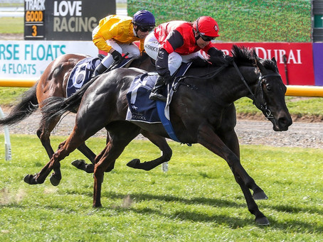Local win in Canterbury Belle Stakes