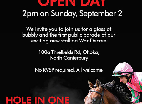 Come see War Decree at our open day