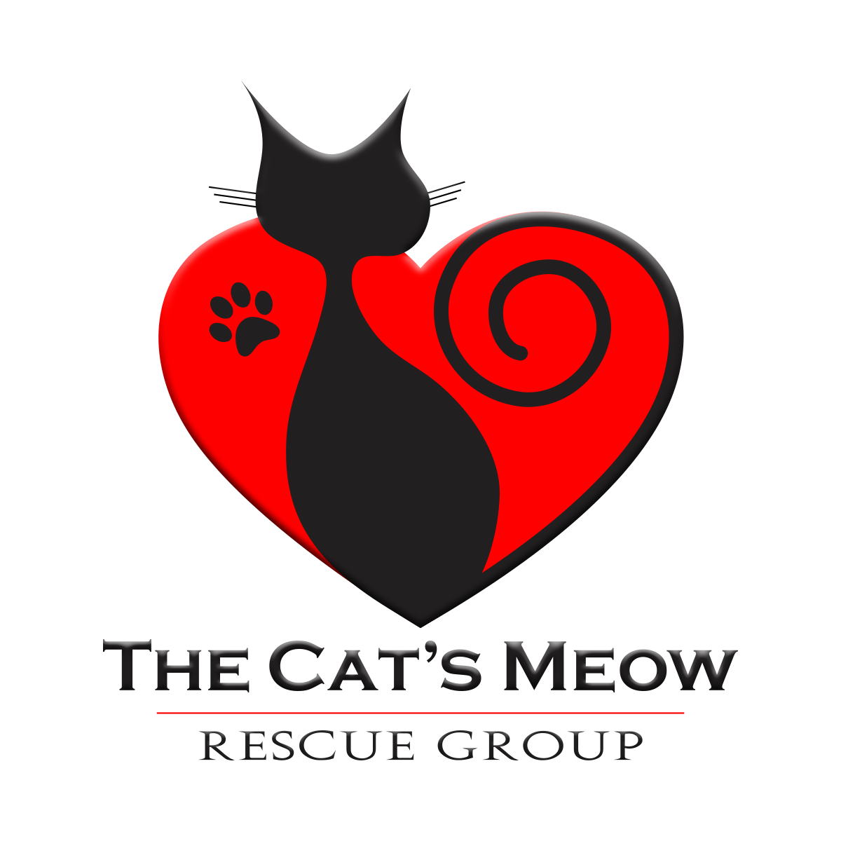 Adoption   The Cat's Meow Rescue Group Delran New Jersey