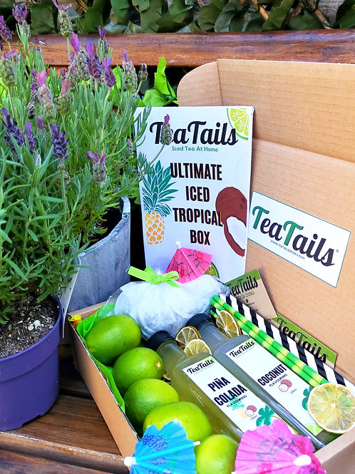 Iced Tea At Home: Ultimate Iced Tropical Box