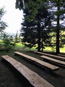 WaldsaalJPG.JPG