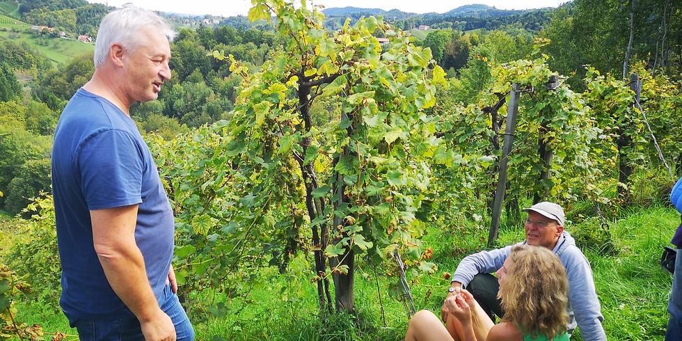 @DAHLKE: Fasten mit Wandern und Wein