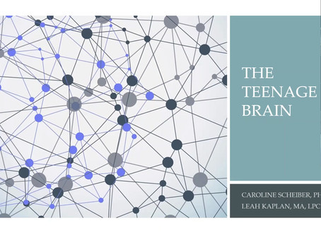 The Teenage Brain - Webinar April 27, 2020. Speakers: Caroline Scheiber, PhD and Leah Kaplan, LPC