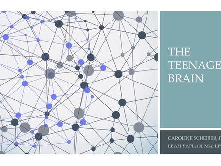 The Teenage Brain - Webinar April 27, 2020. Speakers: Caroline Scheiber, PhD and Leah Kaplan, LPC