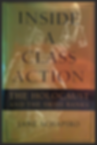Jane Schapiro, Inside A Class Action, nonfiction writing