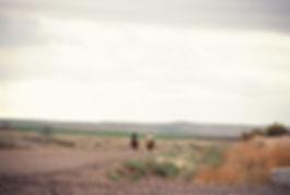 55 Miles From Yesterday, Jane Schapiro, biking, poetry