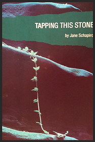 Jane Schapiro, Tapping This Stone, poetry