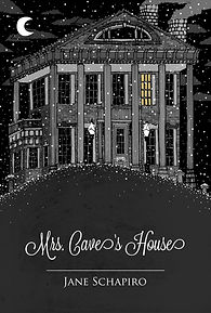 Jane Schapiro, Mrs. Cave's House, poetry