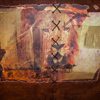 Lion cuir 141213 original