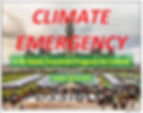 climate-emergency.jpeg.webp