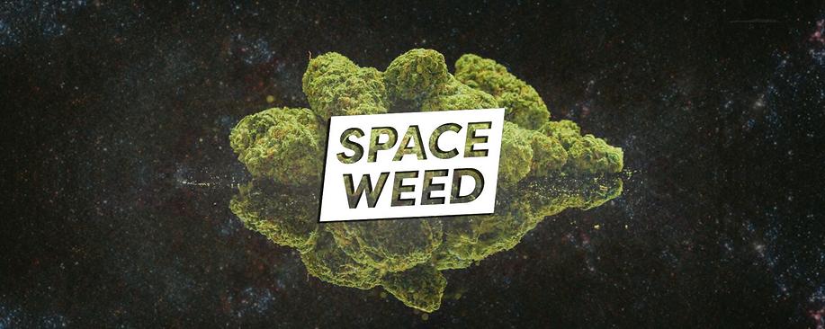 space-weed-header.png
