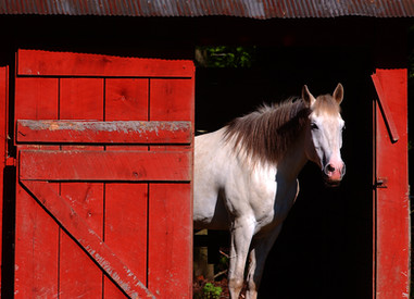 Red Barn  Czar, WV
