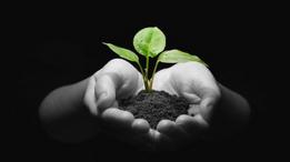 Nytt nettkurs for etablering og drift av renholdsvirksomhet