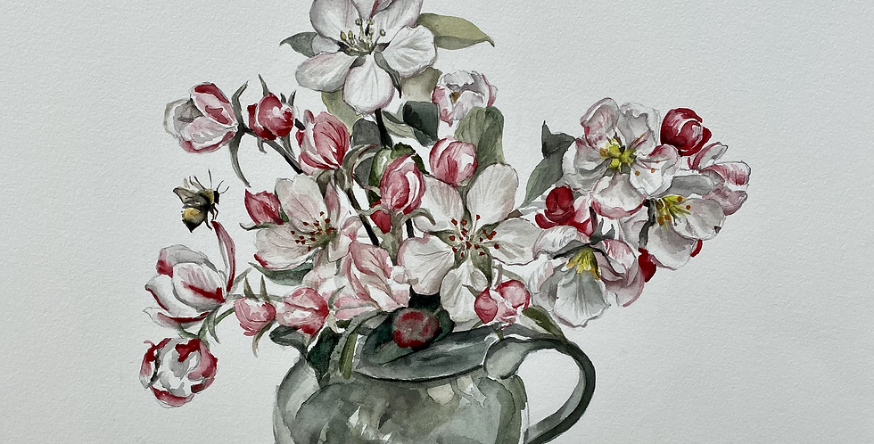 Apple Blossom in a Jug
