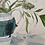 Thumbnail: Flowers from the Garden in a Mochaware Jug
