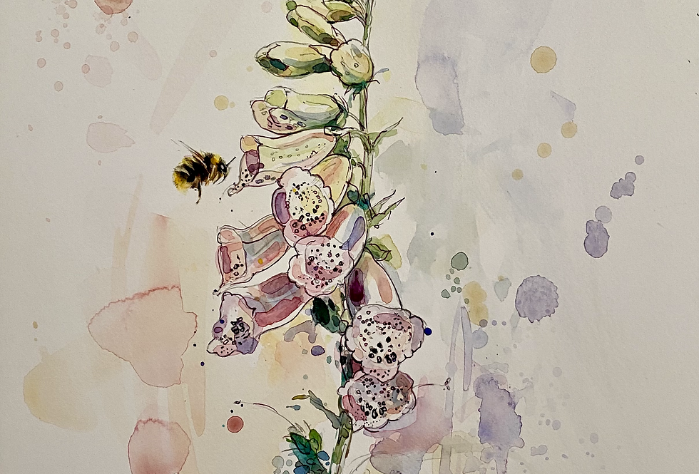 Foxgloves and Bumblebee