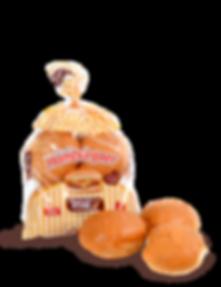 hamburger_sem.png