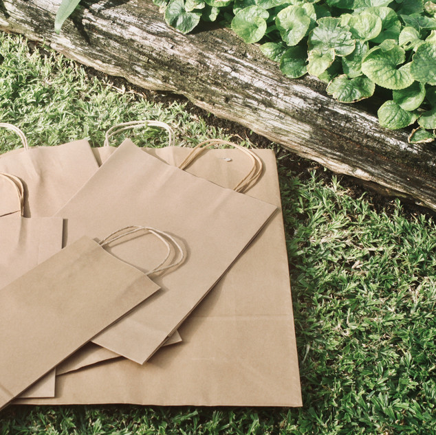 Packaging paper bag gift style