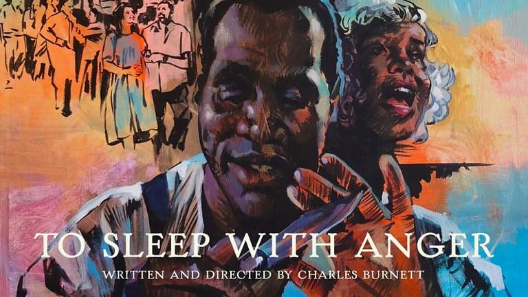 Black Mystery Cinema   To Sleep With Anger