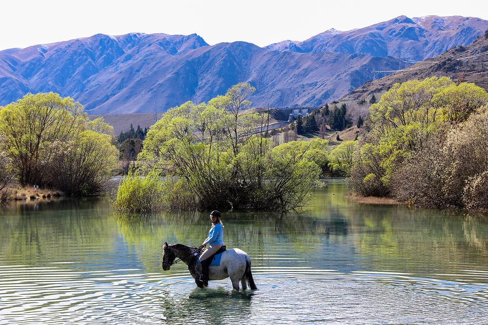 Horse and rider in Lake with trees and mountains