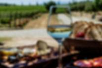 Wineries-in-Costa-Brava-20.jpg