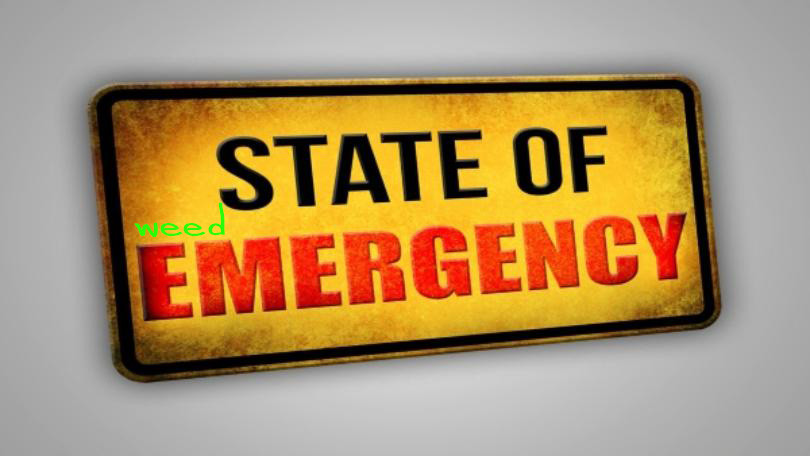State of Emergency in Nevada