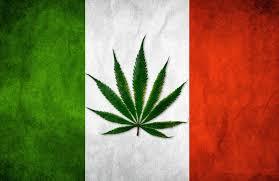Italy Marijuana