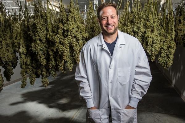 A big Chicago marijuana company is going public