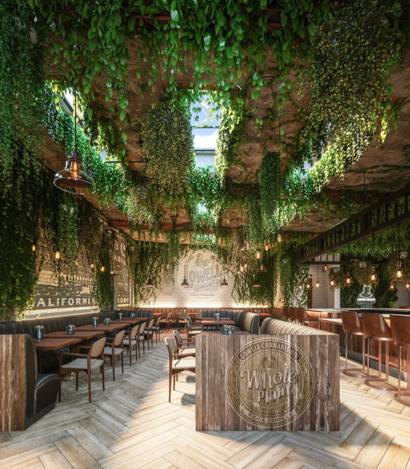 Cannabis Cafe to Open in Hollywood