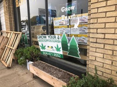 Virginia Garden Stores Swamped by Would-Be Cannabis Growers