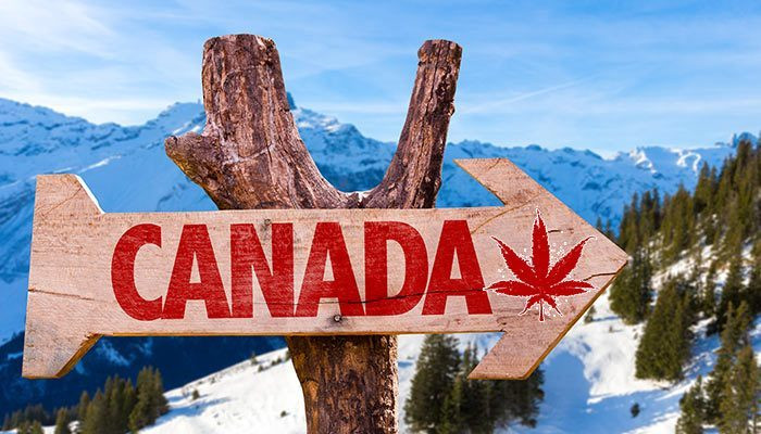 Latin America offers Canada a route to global dominance in medical marijuana