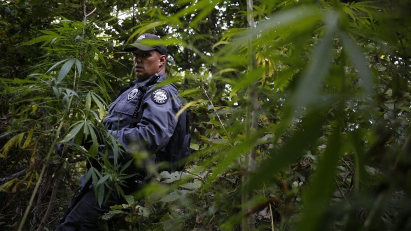 Police officers favor legal marijuana
