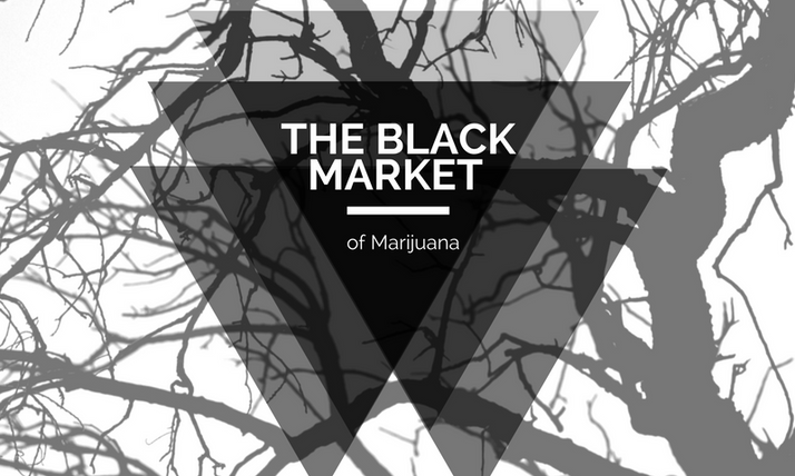 How to kill the marijuana black market