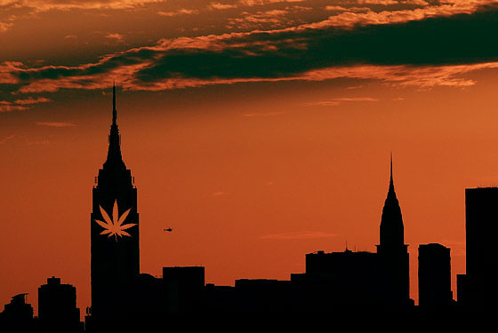 New York Approves One Marijuana Dispensary for Every 3,914,052 People